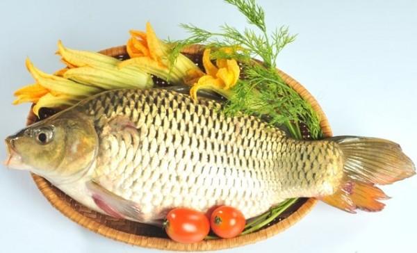 Cá tươi - cách hấp cá ngon