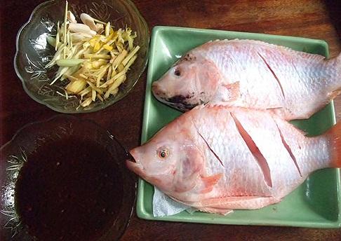 cách làm món cá hấp - Chọn cá diêu hồng 800 gram là vừa