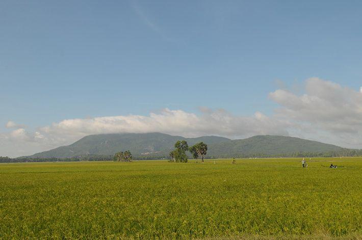 Núi có cấu tạo giống như một mâm trứng đá