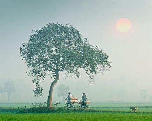 Việt Nam đẹp rực rỡ trên báo Nga