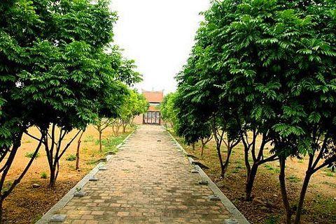 Bắc Giang, làng Thổ Hà, suối Mỡ