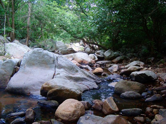 Khu bảo tồn thiên nhiên Núi Chúa