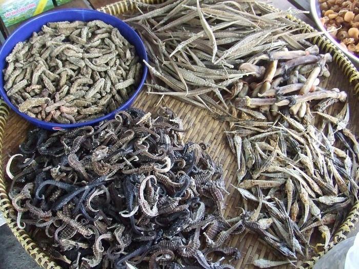 Phú Quốc có đủ loại hải sản khô
