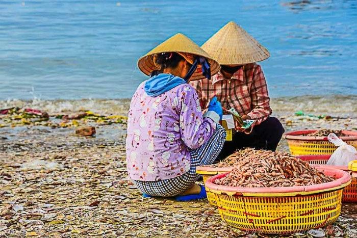 Làng chài Mũi Né-Buôn bán những loại hải sản tươi sống