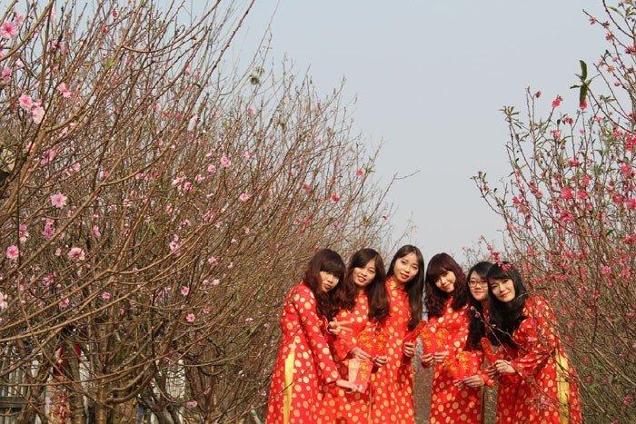 Xuân đang về khắp Hà Nội