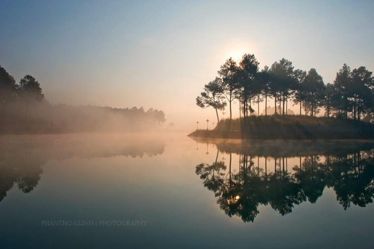 Rừng thông Bản Áng ưu tư soi mình trên mặt nước
