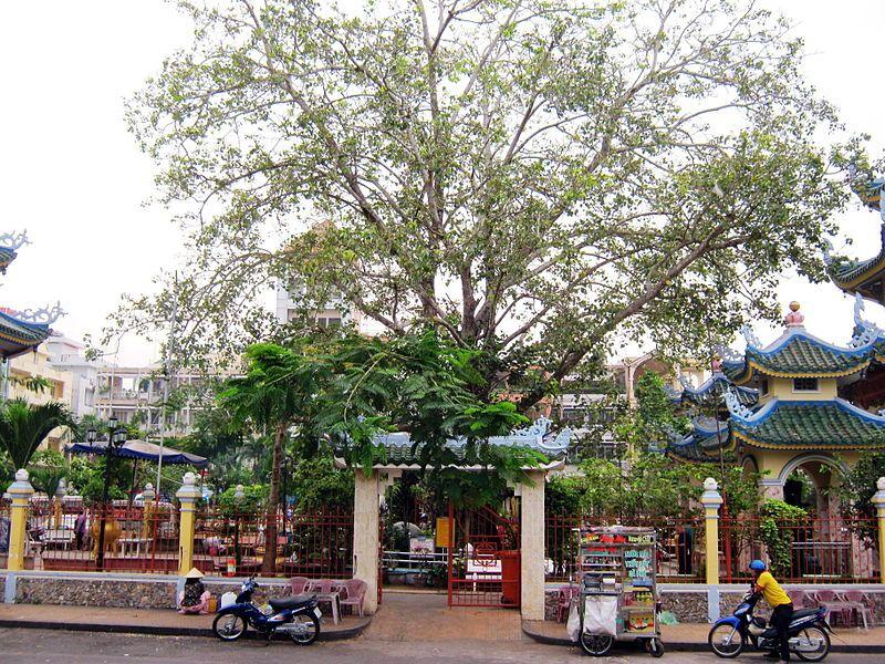 Cổng phụ - Bồ Đề Đạo Tràng