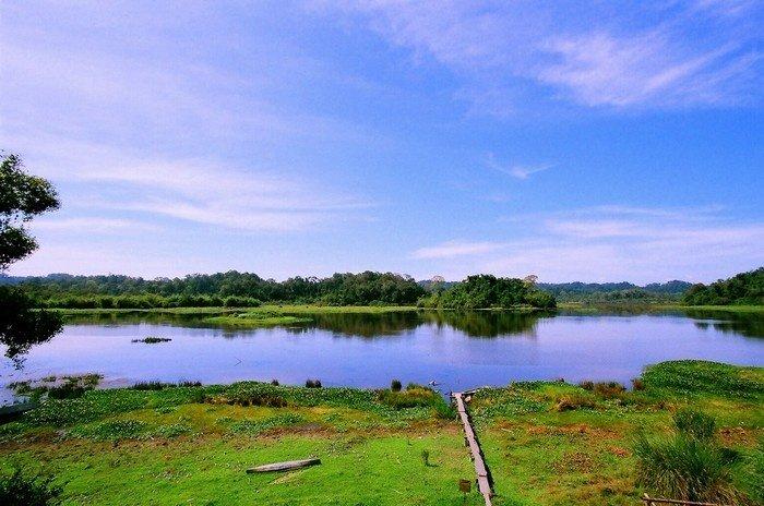 Bức tranh phong cảnh hữu tình ở Bàu Sấu
