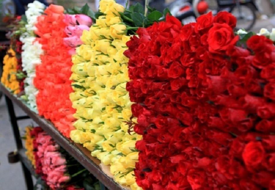 Hoa hồng bán chạy nhất trong những dịp lễ đặc biệt