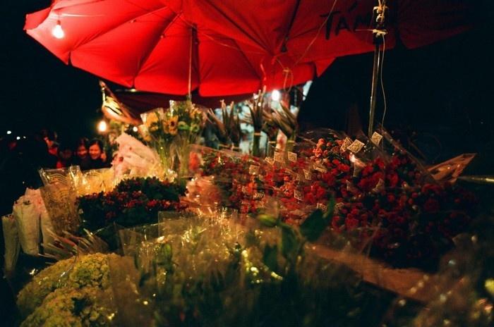 Rất nhiều loại hoa khác nhau được bày bán ở chợ hoa đêm Quảng Bá
