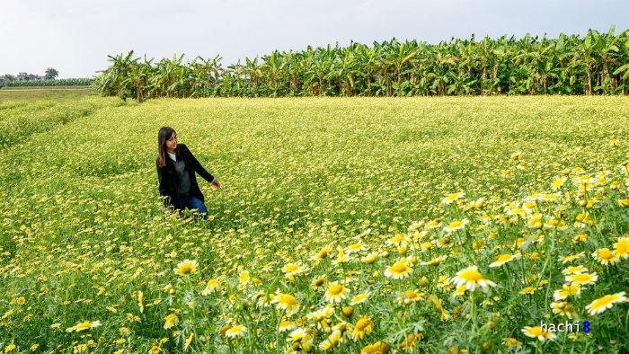Khung cảnh tuyệt đẹp này không quá xa trung tâm Hà Nội, trở thành điểm đến thú vị cho nhiều bạn trẻ.