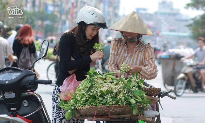 Những chiếc xe đạp chở đầy hoa bưởi qua các ngõ phố Hà Nội