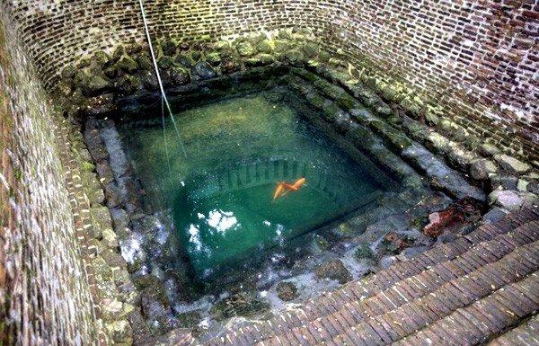 Giếng Ngọc an yên một mảnh hồn làng