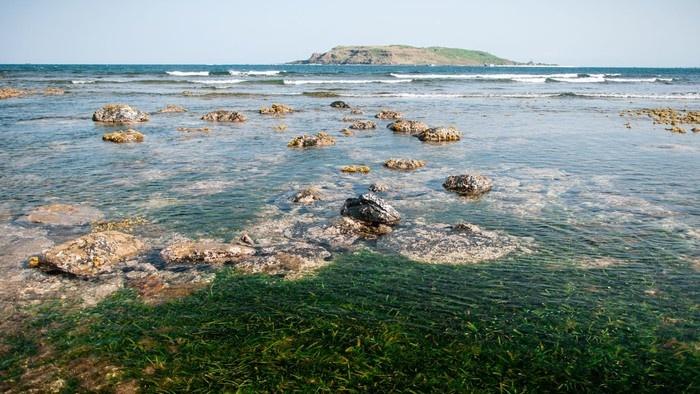 Nước biển trong ngần ở bãi Xép
