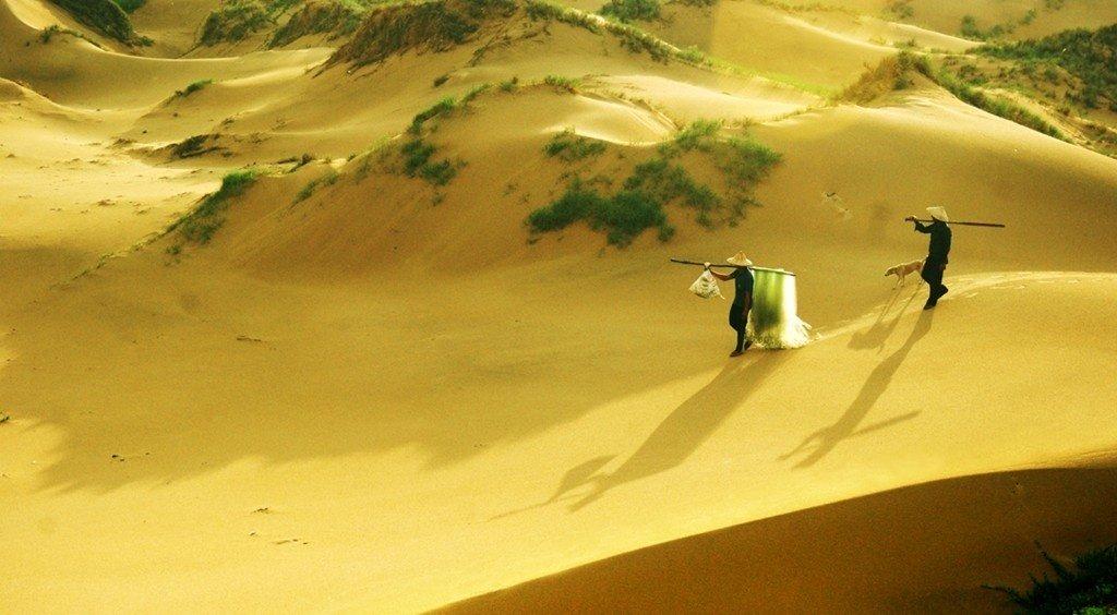Đồi cát bay ở bãi Môn
