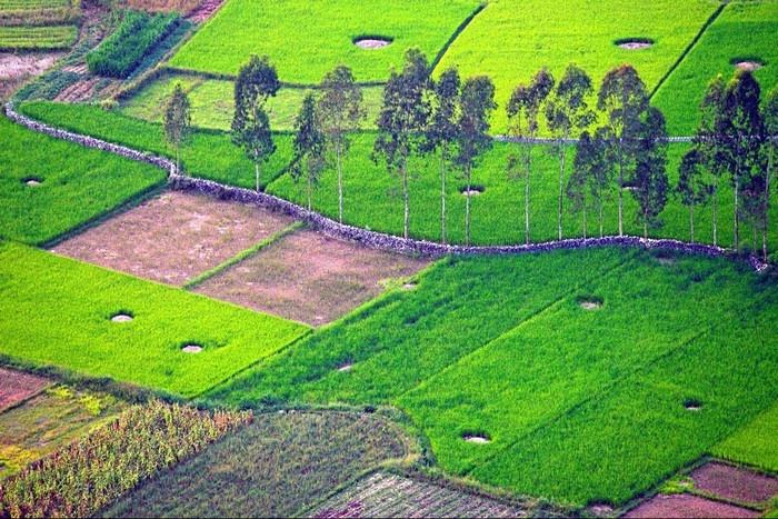 Bắc Sơn - Với những cánh đồng lúa xanh ngút ngàn