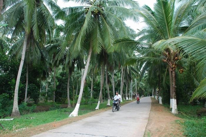 Nét văn hóa dừa đặc trưng ở Bến Tre