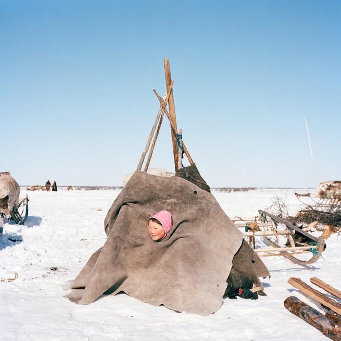 Trẻ em thường thích chơi trò xây nhà và Olga, một bé gái ở bán đảo Yamal, Nga cũng không ngoại lệ.