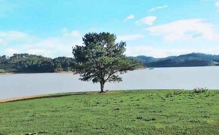 Bước chân du hành đến hồ Suối Vàng - Đà Lạt