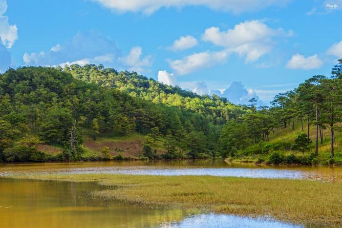Lâm Đồng - Nơi có phong cảnh mộng mơ không kém