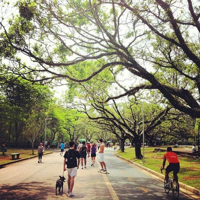 Công viên Ibirapuera