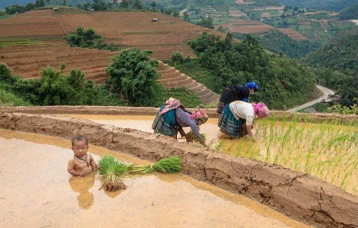 Hình ảnh về cuộc sống đời thường người dân vùng cao