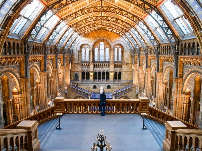 Bảo tàng Lịch sử Tự nhiên, Anh