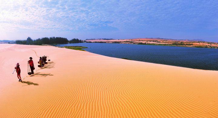 Tìm đến ốc đảo xanh Bàu Trắng giữa cồn cát