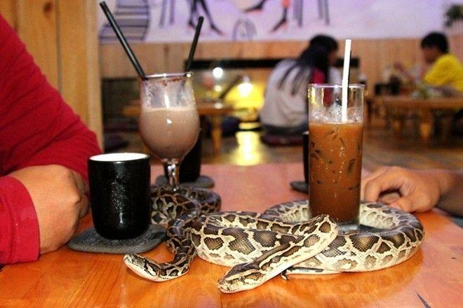 Babo Coffee