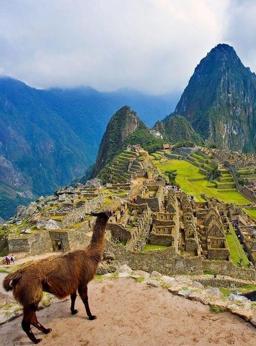 Machu Picchu làm cảm hứng cho bộ phim The Emperors New Groove