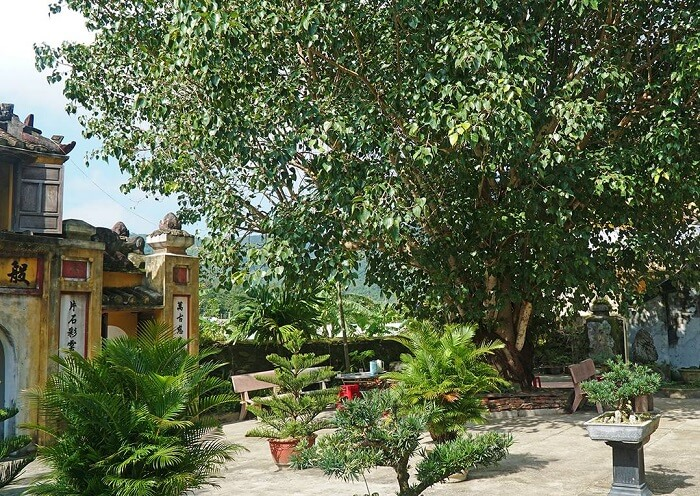 Chùa Hải Tạng – ngôi cổ tự linh thiêng của Cù Lao Chàm Quảng Nam