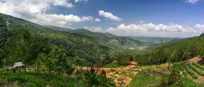 Rừng núi bao la - Ảnh: Lee Starnes