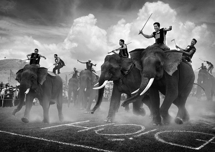 Văn hóa Tây Nguyên trên lưng voi.