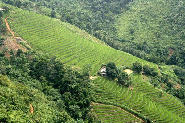 Những con đường đẹp nhất Việt Nam