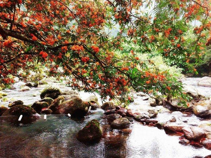 Suối nước Moọc điểm dừng chân tuyệt vời trong hành trình du lịch Quảng Bình