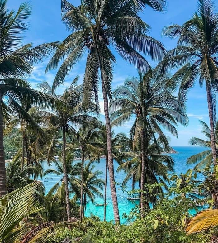 Kinh nghiệm du lịch đảo Koh Tao Thái Lan