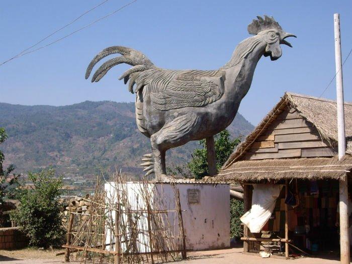 làng gà darohoa