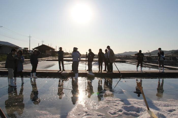 Cánh đồng muối Taepyeong, Hàn Quốc