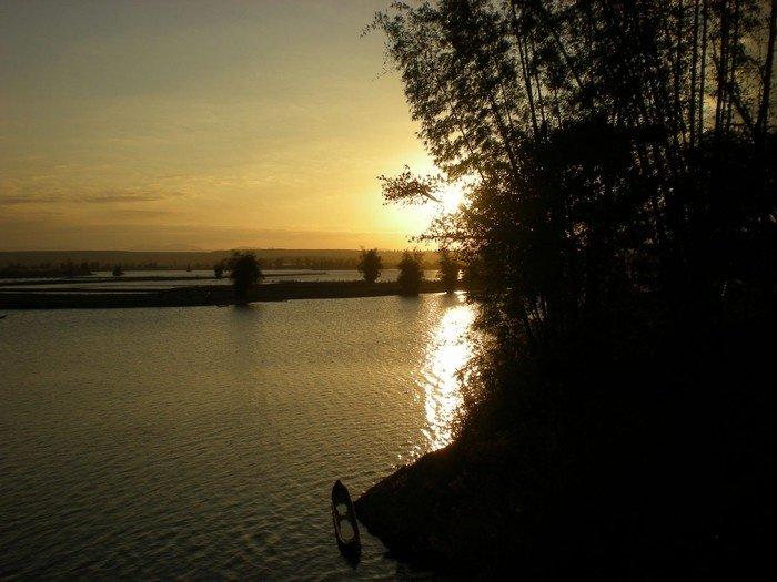 Cụm tre già gắn liền với dòng sông