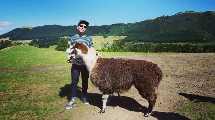 Những tour du lịch Rotorua New Zealand trong ngày hot nhất hiện nay
