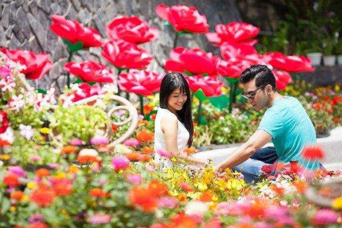 Lạc lối vào những vườn hoa rực rỡ sắc màu ở Bà Nà Hills