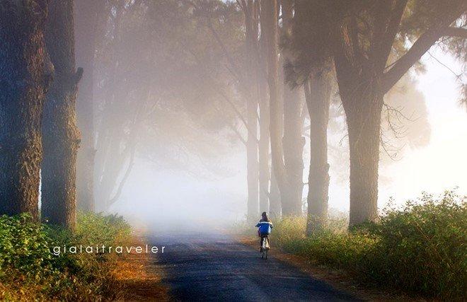 Trên con đường nhỏ dẫn tới vùng đất Tơ Rưng huyền thoại