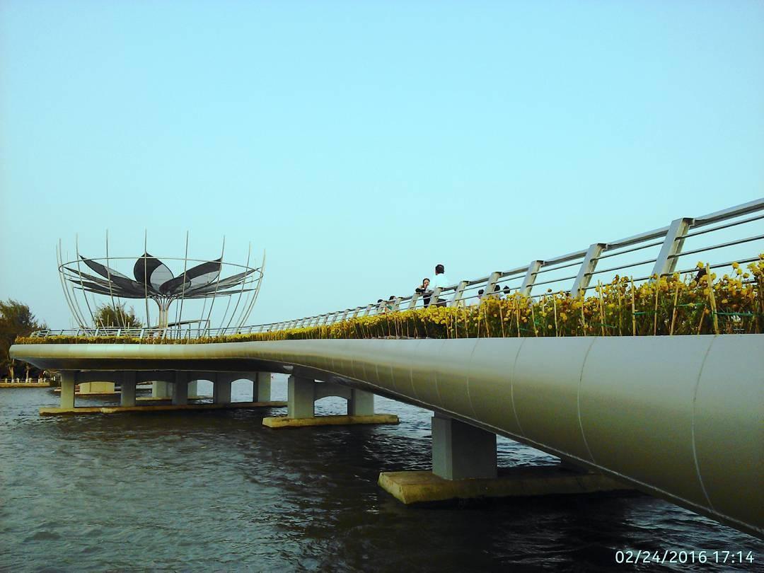 Vẻ đẹp hiện đại của cầu