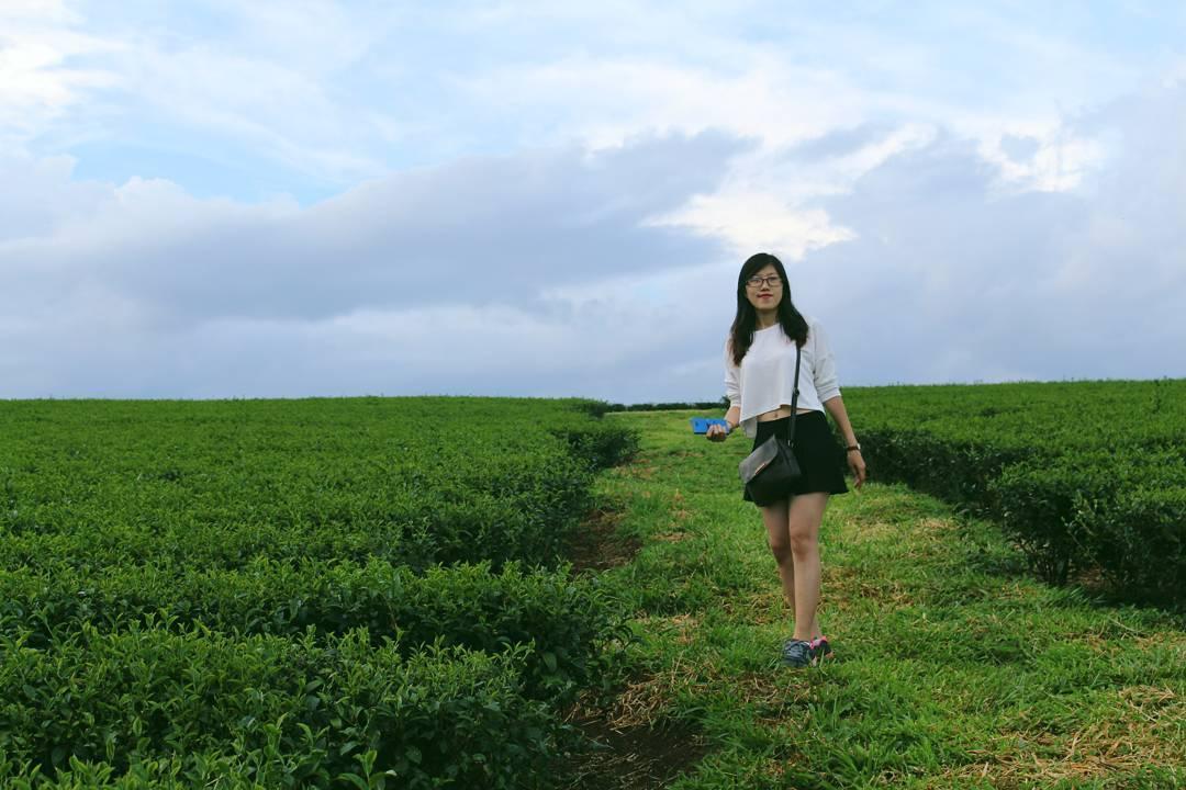 Cho bước chân hoan hỉ tìm về - Ảnh: @nghinghinghi