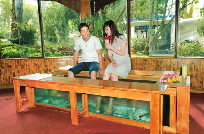 Massage cá - Ảnh: Sưu Tầm