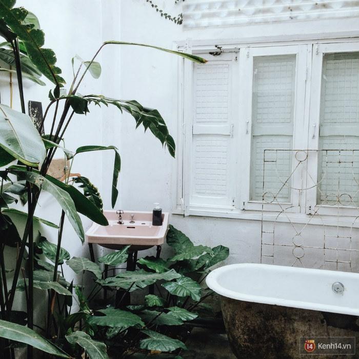 Bên trong một phòng tắm của Tre