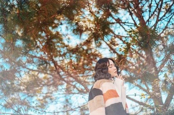Lắng nghe gió thì thầm gọi tên qua những tán cây - Ảnh: sưu tầm
