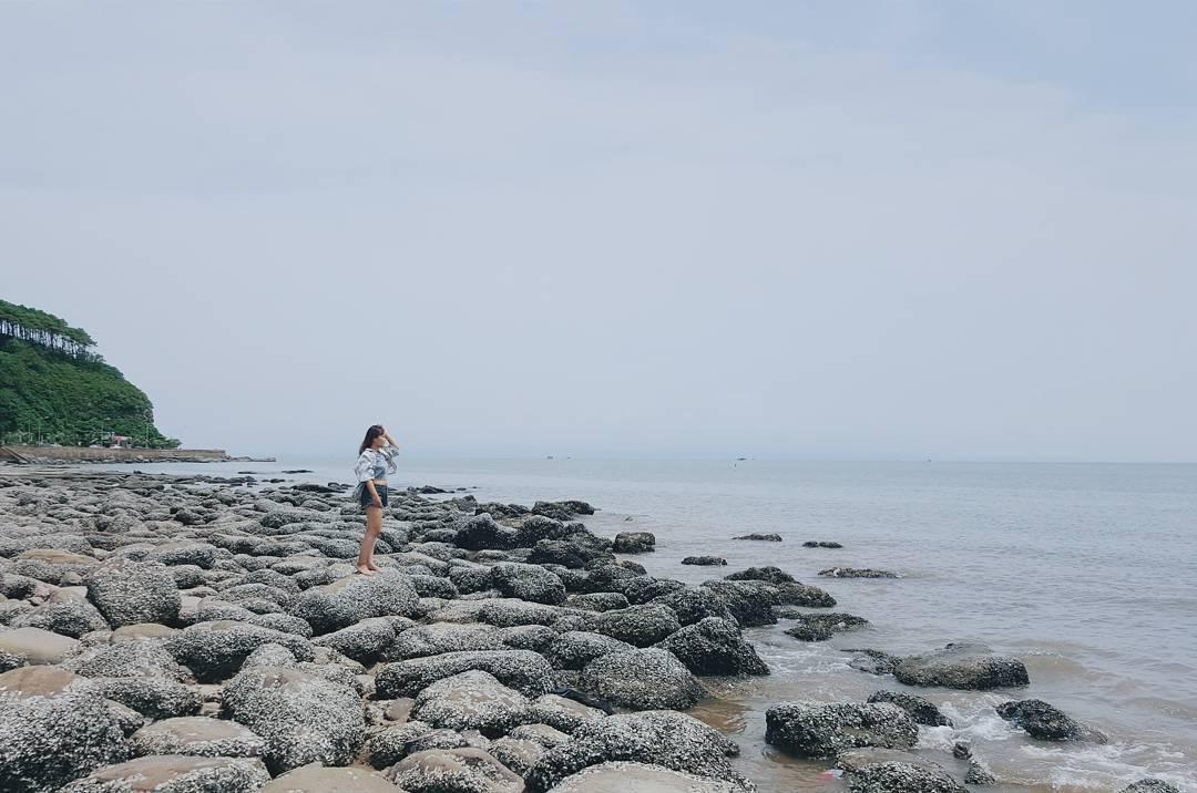 Ngây ngất với 'đóa hoa biển' giữa đất cảng Hải Phòng - Ảnh: @chippy.93