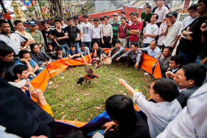Vui nhộn lễ hội làng Thổ Hà, Bắc Giang