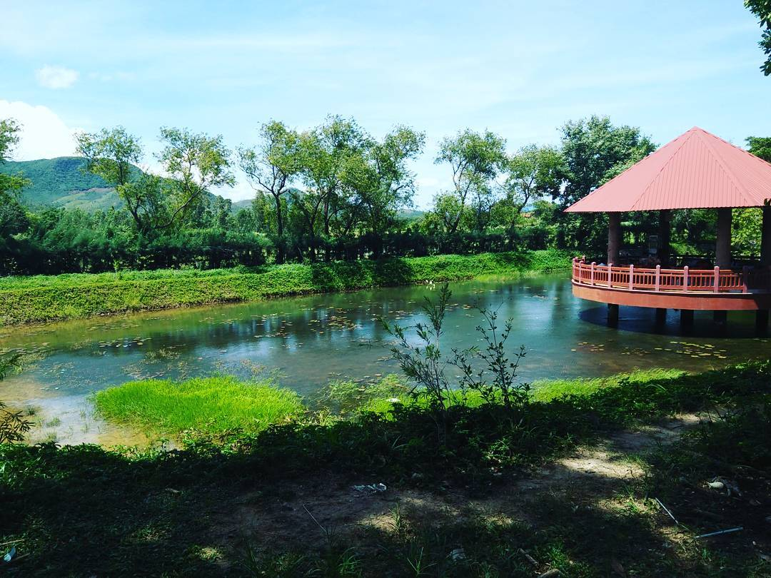 Nhà nghỉ hài hòa giữa màu xanh của thiên nhiên - Ảnh: @white_chocolate_ro